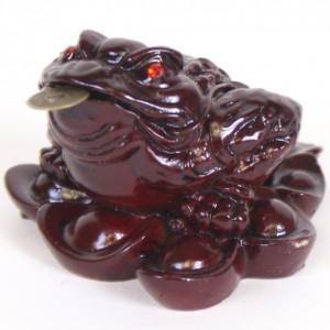 grenouille porte bonheur